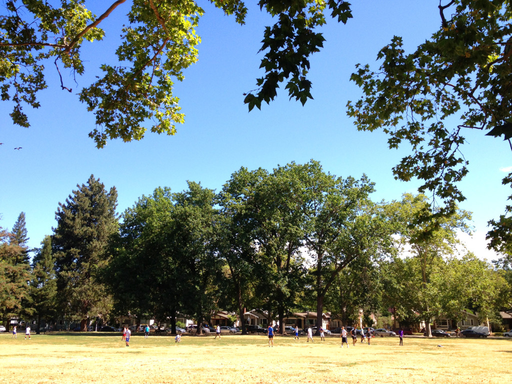 McKinley Park, East Sacramento, on July 4, 2015.